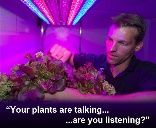 Thomas Frey Futurist Speaker tapping into the secret language of plants