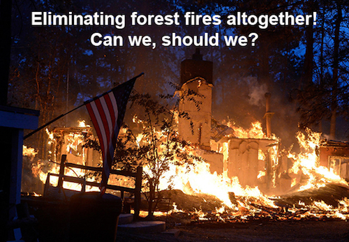 Thomas Frey Futurist Speaker proposal to eliminate forest fires completely