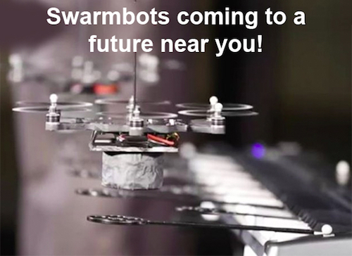 Will there be Swarmbots in Your Future?