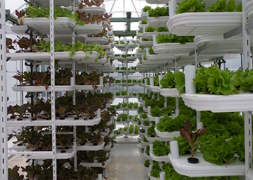 Thomas Frey Futurist Speaker Home-based food growing systems are becomeing very sophisticated