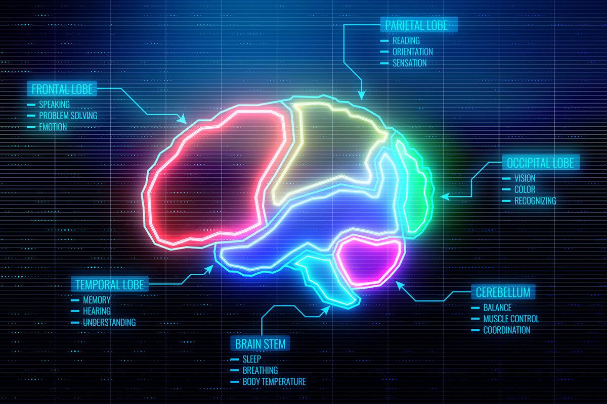 미래 학자 연사 Thomas Frey 블로그 : 10 초 두뇌 인터페이스 만들기