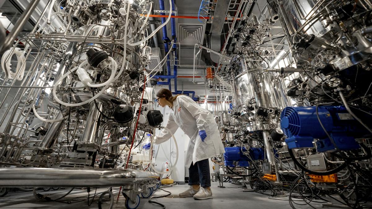 Futurist Speaker Thomas Frey Blog: Our Lab Grown Future